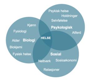 Den biopsykososiale modellen: Helse forstås ofte i biologisk, psykologisk og sosial kontekst.