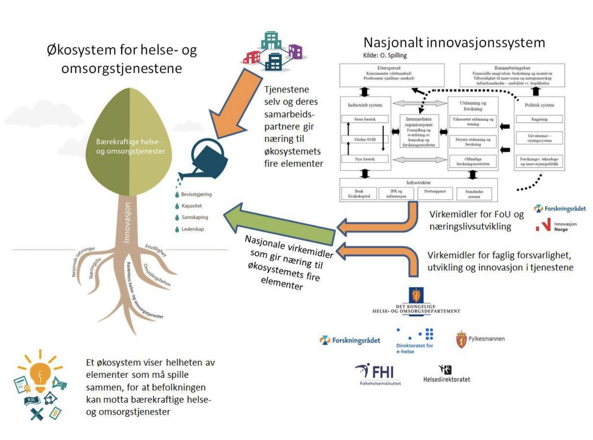 Illustrasjon av økosystem for innovasjon.