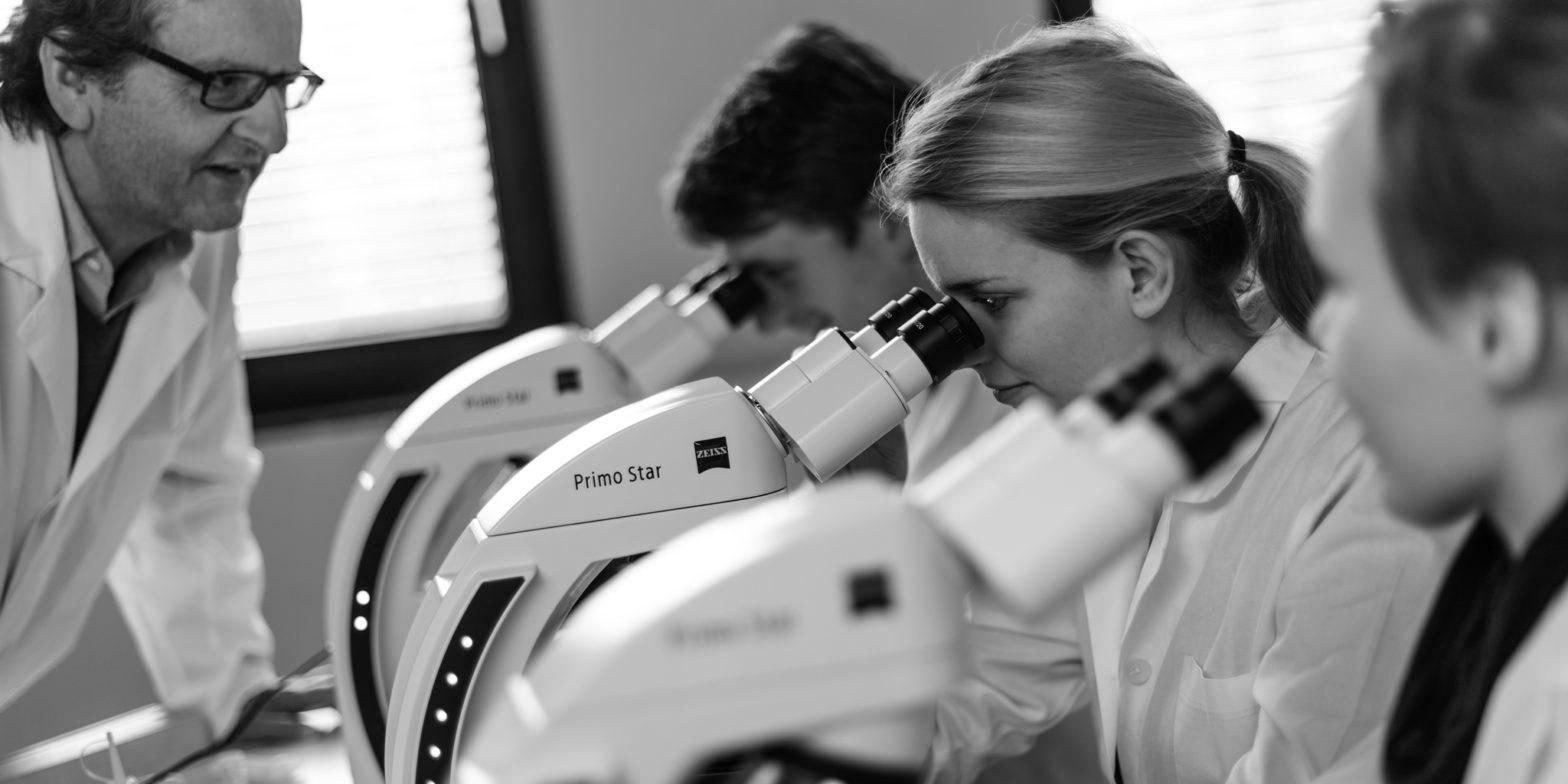 Leger ser i mikroskopet. Foto: Zeiss Microscopy